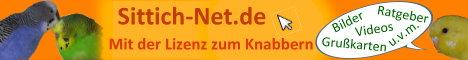 Wellensittiche - Mit der Lizenz zum Knabbern [www.sittich-net.de]